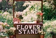Concept 1- Pop up florist/ workshops.