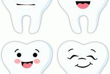 dientes y muelas