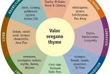 Oils & Natural Elements - Nature's Healing