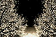 luna stupenda