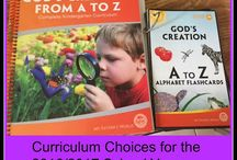 Curriculum Choices for 2016/2017 School Year