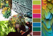 moc koloru / bunch of color / Farbpalette