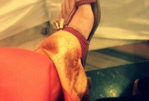 I love my feet.