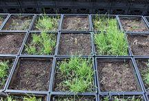 Farming Sustainable Ag