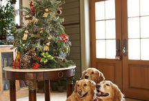 Christmas!:) / by Natali Hernandez