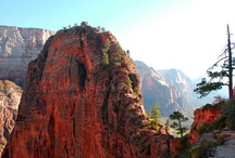zion / by JEANNETTE PRICE