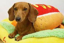 Wiener Dog Costumes