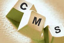 Content Management System Services Dubai / Many content management systems are focused on developer or site owner needs, but TBITS is a CMS  that truly delivers the best to both worlds.