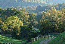 Kentucky--home sweet home