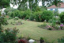 le jardin de lalouve création de 3 nouveaux parterrres / à l'automne 2016 je me suis décidée a modifier le jardin en créant 3 nouveaux parterres, voici  le résultat en juin 2017