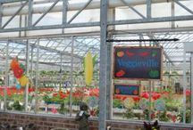 Edibles @ Garden Centers / Edible retail display ideas from independent garden centers.