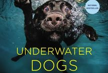 Doggie Reads / Entertain Some Brain Wrinkles With These Lovable Texts / by Griswold and Coop
