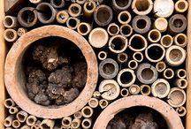 Humler og bier og insekter