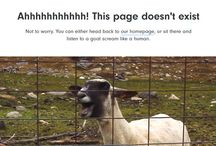 404 PAGE !