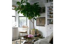 Living room / Beautiful living spaces I love!