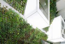 Arch_Green Atrium