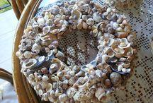 Deniz kabukları / Tırnak