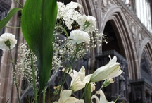 Churches and Cathedrals / Beautiful Places of Worship