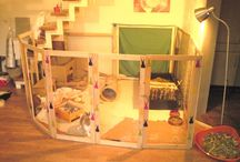 Guinea pig hutch ideas