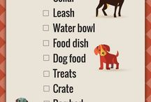 New Pet Owner Tips
