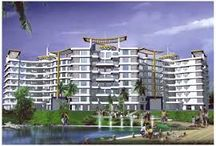 Wakad Projects