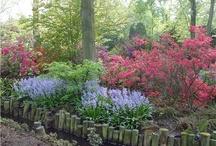Asian influenced Gardens