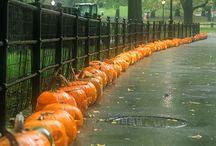 Halloween & Autumn / Halloween & Autumn