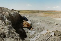 Dinosaur Digging / Dinosaur digging in the western U.S. / by Patrick McSherry