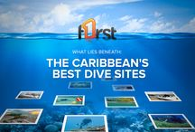 Best Dive Sites in the Caribbean / What lies beneath? Come find out.