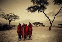 Ősi törzsek