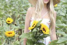 Sunflowers / We're all golden sunflowers inside