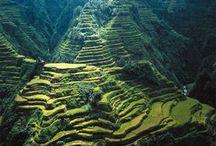 Philippines my native land