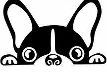Kutyaságok