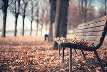 jesienna ulewa