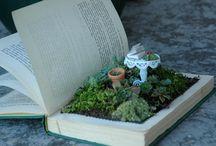 fairy gardens / by Briana Cleveland