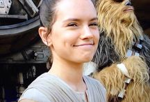 Daisy Ridley / Daisy Ridley was born at the 10th of April 1992 in Westminster, London (England). She had her education at Birkbeck, Univesity of London. She's known for her role as Rey in Star Wars: The Force Awakens (2015), Star Wars: The Last Jedi (2017)