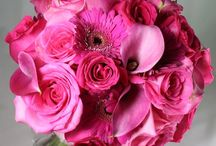 Pretty in Pink / Pinks come in a variety of shades from bright and bold to soft and intimate.