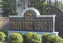 South Carolina Real Estate