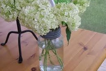 Mason Jars!  / by Beverly Ladd