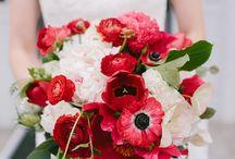 svatba cervena