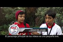 Colegio Montessori British School - One minute · Environmental Education day