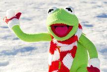 Let it snow! / Outdooraktivitäten im Winter