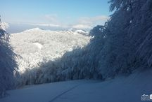 Ski / Skialp / Freeride