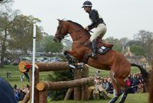 Equestrian News and Media / The latest news from the equine world and comments on the media.