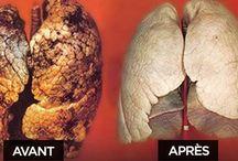 Purifier poumon