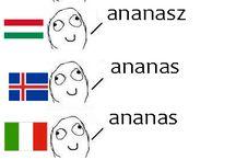 Memy językowe