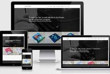 Divi Theme Websites / WordPress websites built using the Divi Theme for WordPress.