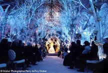 Winter Weddings / Anything that can be associated with a winter wedding