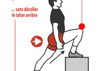 exercices physiques