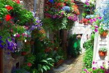 Appendere vasi di fiori